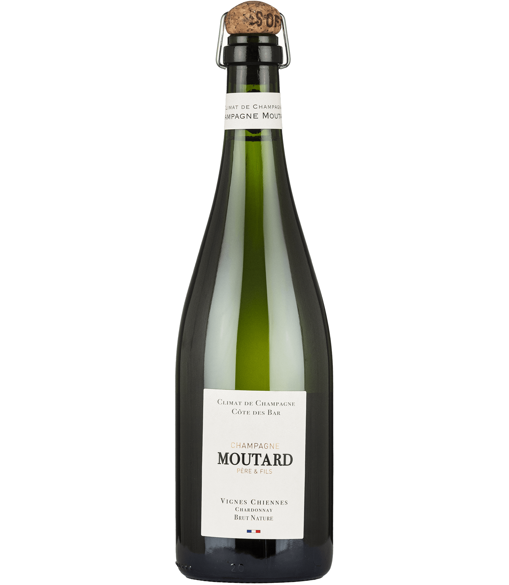 Moutard-Vignes_Chiennes-1